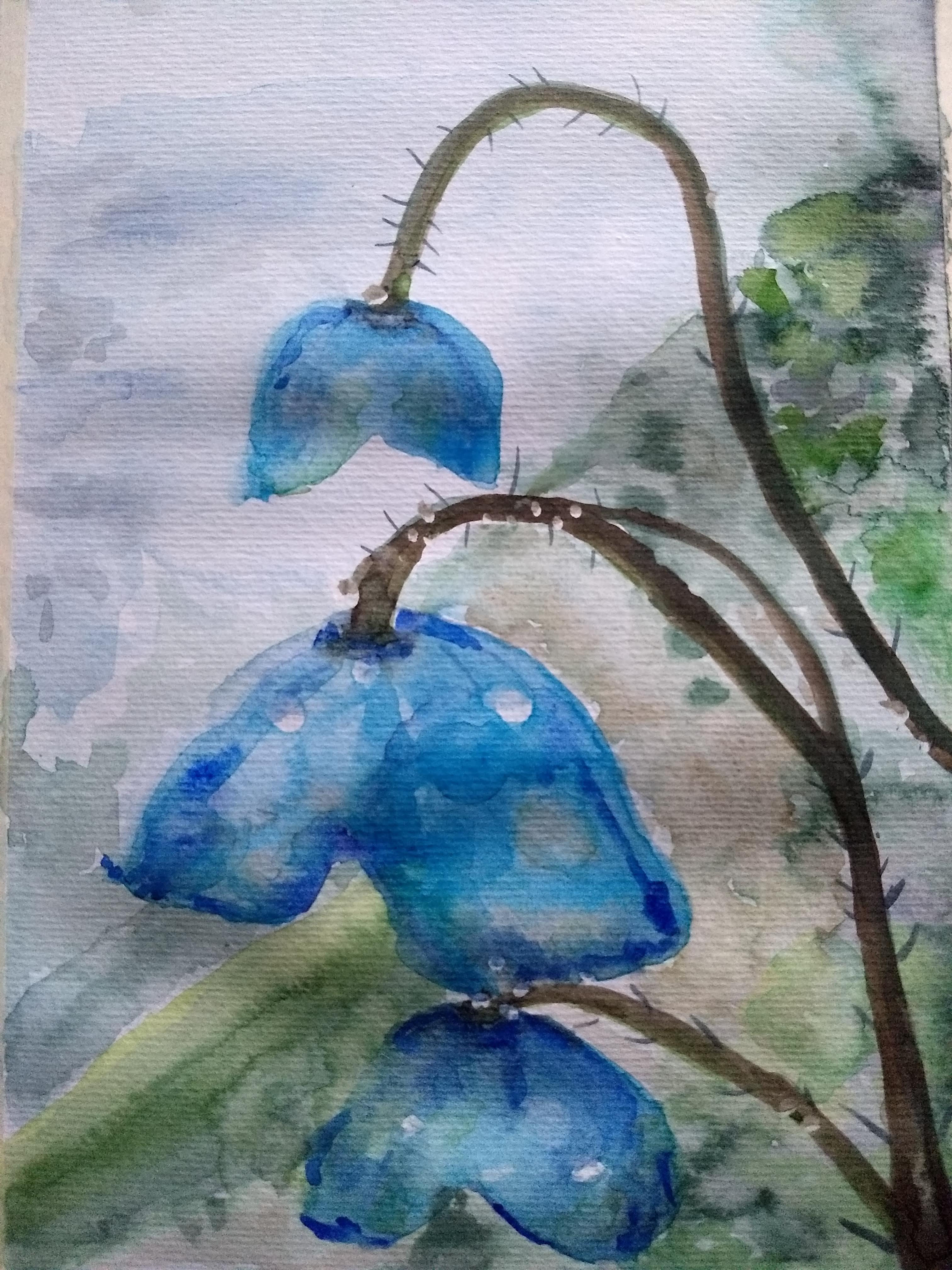 aquarel-bloem-fantasie